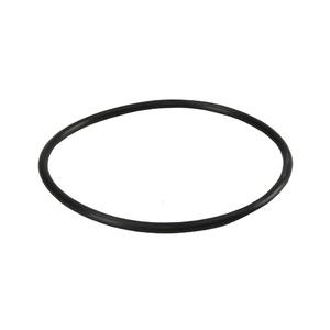 Кольцо уплотнительное для корпусов BigBlue Aquafilter OR-N1524X57