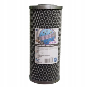 Сменный элемент Aquafilter FCCBL10BB-S