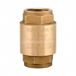 Обратный клапан ITAP EUROPA100 1''